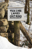Tek Care Lambs Ont Road. A sign written in a north of England dialect asking motorists to take care of new born lambs Royalty Free Stock Photos