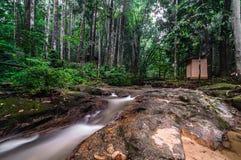 Tekala瀑布和河沿 免版税图库摄影
