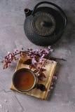 Tekanna och kopp te med blomningfilialen Fotografering för Bildbyråer