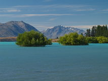 tekapo озера Стоковое Фото