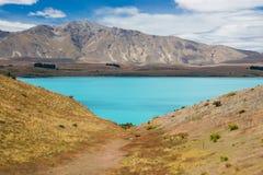 Tekapo del lago in Nuova Zelanda Fotografie Stock