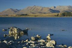 tekapo zealand озера новое стоковая фотография rf