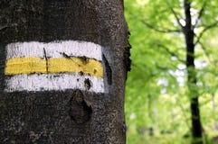 Teken dat op boom wordt geschilderd Royalty-vrije Stock Afbeelding