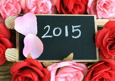 Teken die het jaar 2015 tonen Stock Foto's