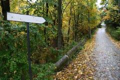 Teken op een weg die door bladeren wordt behandeld Stock Foto
