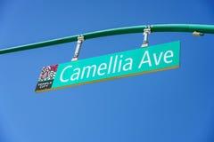 Teken van Camellia Ave royalty-vrije stock afbeeldingen