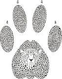 Teken van jachtluipaard het voetafdruk-dierlijke Sporen royalty-vrije stock fotografie