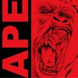 Tekening van een Aap` s hoofd Leider van een pak gorilla's Agressieve aap Grafisch ontwerp van de dekking Malplaatje voor ontwerp Royalty-vrije Stock Foto's