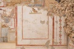 Tekeningen op Terrasalgemene vergadering, de Oude Stad van Ephesus Royalty-vrije Stock Fotografie