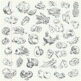 Tekeningsfruit uit de vrije hand en groenten Stock Afbeeldingen