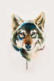 Tekeningshoofd van de wolf Stock Afbeelding