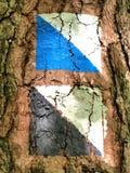 Tekens op boom Stock Foto's