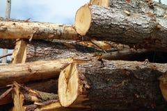 Tekens van ontbossing in Brits Colombia Stock Fotografie