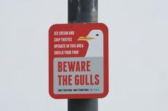 Tekenwaarschuwing over gevaar om meeuwen te reinigen royalty-vrije stock foto