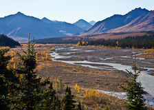 The Teklanika River in Fall Royalty Free Stock Photos