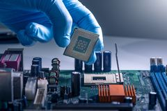 Teknikeren lägger en CPU på håligheten av datormoderkortet begreppet av datoren, service, elektronik, maskinvara, royaltyfria foton