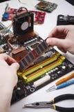 Teknikeren pluggar in mikroprocessorn till moderkortet Arkivfoton