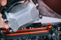 Teknikeren räcker installation av CPU-kylarefanen på ett datorPCmoderkort Bitcoin som bryter cryptocurrency med GPU-riggar Arkivfoton