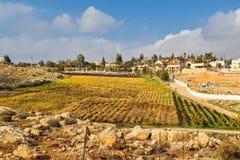 Small Jewish settlement in Judea desert stock photos