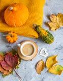 Tekopp med för Autumn Time Bakery Pretzel Toned för varm choklad för kaffe filten för halsduk för handarbete foto fotografering för bildbyråer