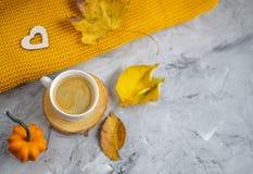 Tekopp med för Autumn Time Bakery Pretzel Toned för varm choklad för kaffe filten för halsduk för handarbete foto royaltyfri fotografi