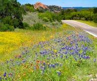 Teksas Wildflowers Zaczarowana skała zdjęcie royalty free