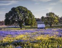 Teksas wzgórza kraj zdjęcia stock