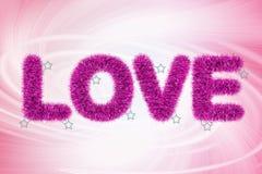 Tekst miłość z świecidełko wzorem Obraz Royalty Free
