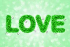 Tekst miłość z świecidełko wzorem Zdjęcia Stock