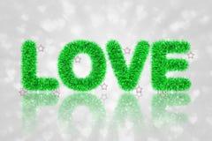 Tekst miłość z świecidełko wzorem Fotografia Stock