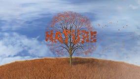 Tekst natura w drzewie, spada opuszcza ilustracji