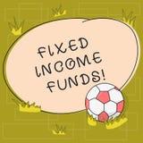 Teksta znak pokazuje Niezmiennych dochodów fundusze Konceptualna fotografia jakaś typ któremu robi zapłaty piłki nożnej piłce poż ilustracja wektor