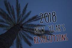 Teksta znak pokazuje 2018 nowy rok 'S postanowienia Konceptualna fotografii lista cele lub cele być dokonującym Drzewnym palmowym Zdjęcie Royalty Free
