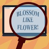 Tekstteken die Bloesem zoals Bloem tonen Conceptuele fotoinstallatie of boom die de zaden of het fruitvergrootglas zullen vormen vector illustratie