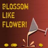 Tekstteken die Bloesem zoals Bloem tonen Conceptuele fotoinstallatie of boom die de de zaden of Wijn van de fruitcocktail zullen  royalty-vrije illustratie