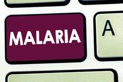 Tekstteken die Malaria tonen Conceptuele gedragen foto Levensgevaarlijke mug de Periodes van de bloedziekte van koorts royalty-vrije stock foto's