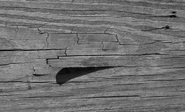 2 tekstur drewna Obrazy Royalty Free