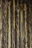 Tekstur drewniane deseczki, ściana poręcze Zamyka W górę Odłupany błękitnego obrazy stock