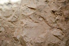 tekstura ściana zrobi żółta piaskowata crumbly skała skała z czerepami i warstwami verdure pozyskiwania środowisk gentile Fotografia Stock