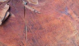 Tekstura świeżo siekający drzewo Obraz Royalty Free
