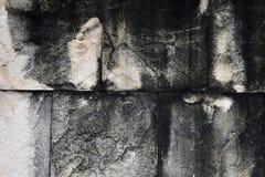 Tekstura betonowa ściana z plamą suchy liszaj fotografia royalty free