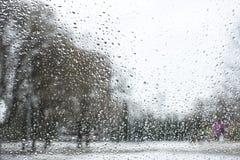 Tekstura bokeh opuszcza na szkle przed miastowym parka krajobrazem obraz stock