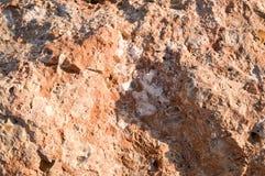tekstura brąz, wybrzuszający, ostra porowata klatka piersiowa kamienia kamień z solankowymi depozytami verdure pozyskiwania środo Fotografia Royalty Free