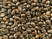 Tekstura brąz piec kawowych fasoli wzór Zdjęcie Stock