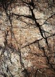 Tekstura brudno- kamienie z pęknięciami fotografia royalty free