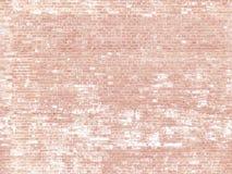 Tekstura cegła Fotografia Stock