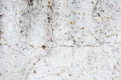 Tekstura, ?ciana, beton, ja mo?e u?ywa? jako t?o obraz royalty free