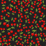 Tekstura czerwona wiśnia Fotografia Royalty Free