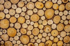 Tekstura drewniana beli sekcja zdjęcie stock