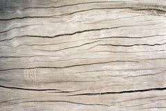 Tekstura drewniany dębowy stary styl, tła drewniany stary brudzi Zdjęcie Stock